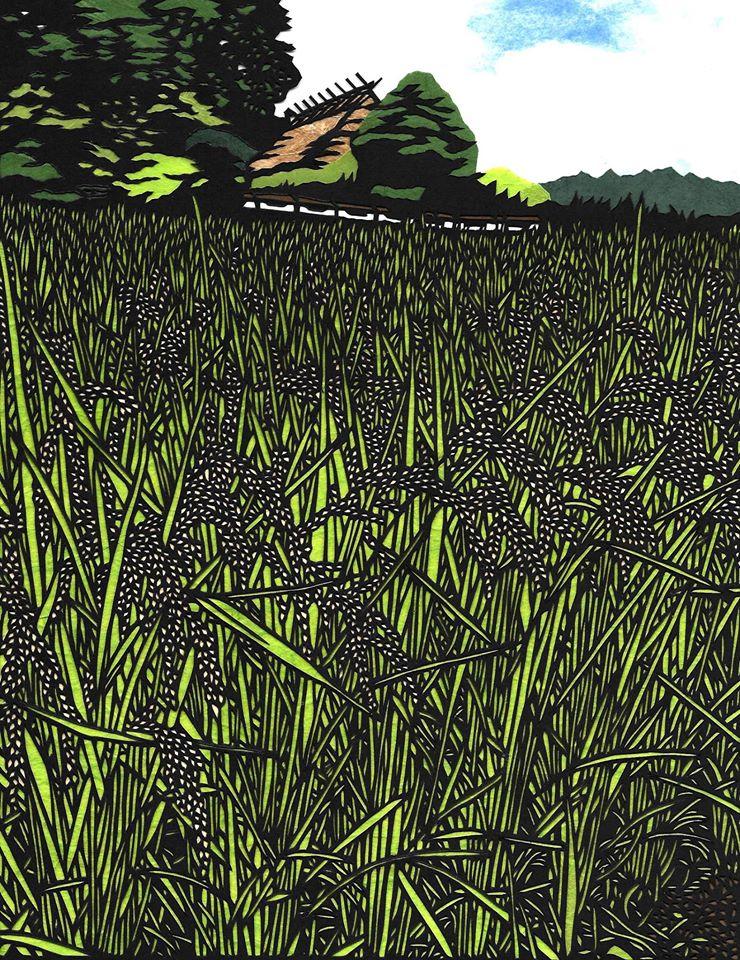 Daigo Rice Field