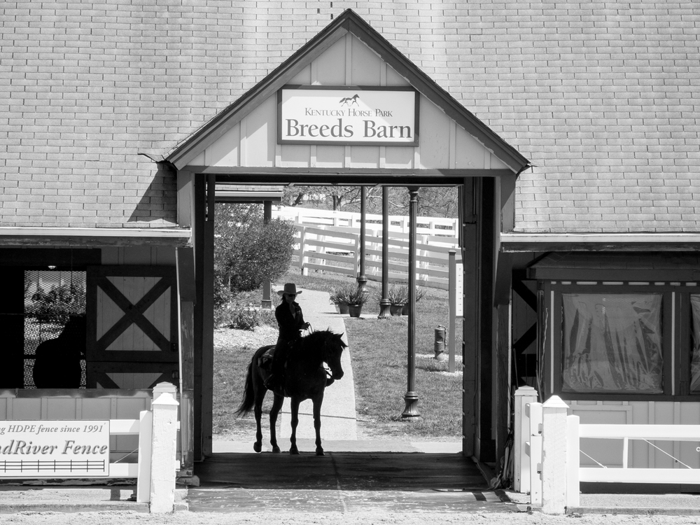 Breeds bard show at the Kentucky Horse Park