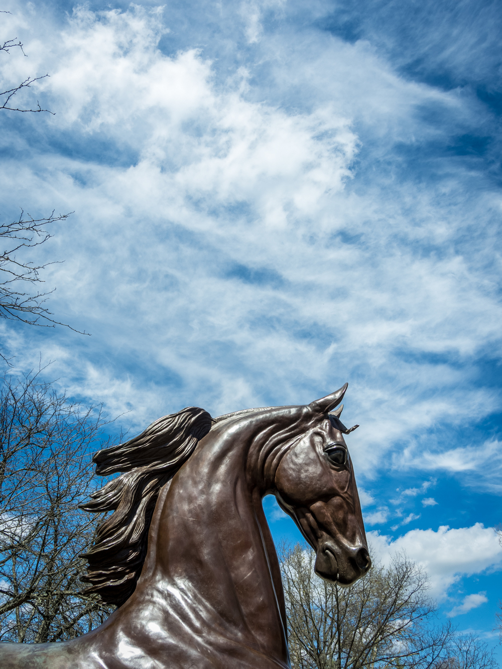Statue at the Kentucky Horse Park
