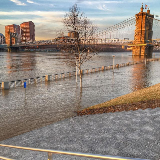 I need a new walking path now #flooding #cincy #cincinnati #cincyigers #cincyusa #iphone #wcpo #local12wkrc