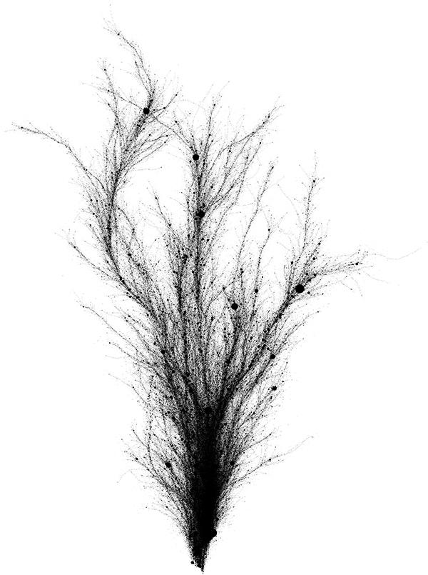 Reverb Tree