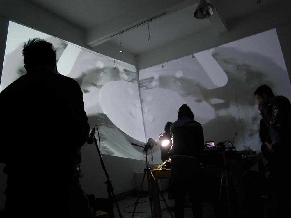 COCODRILES Live Performance07.jpg