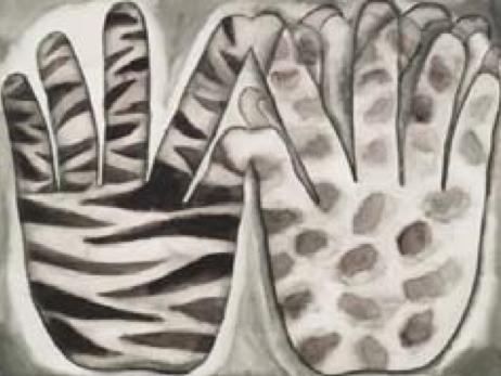 斑马,豹  Zebra, Leopard