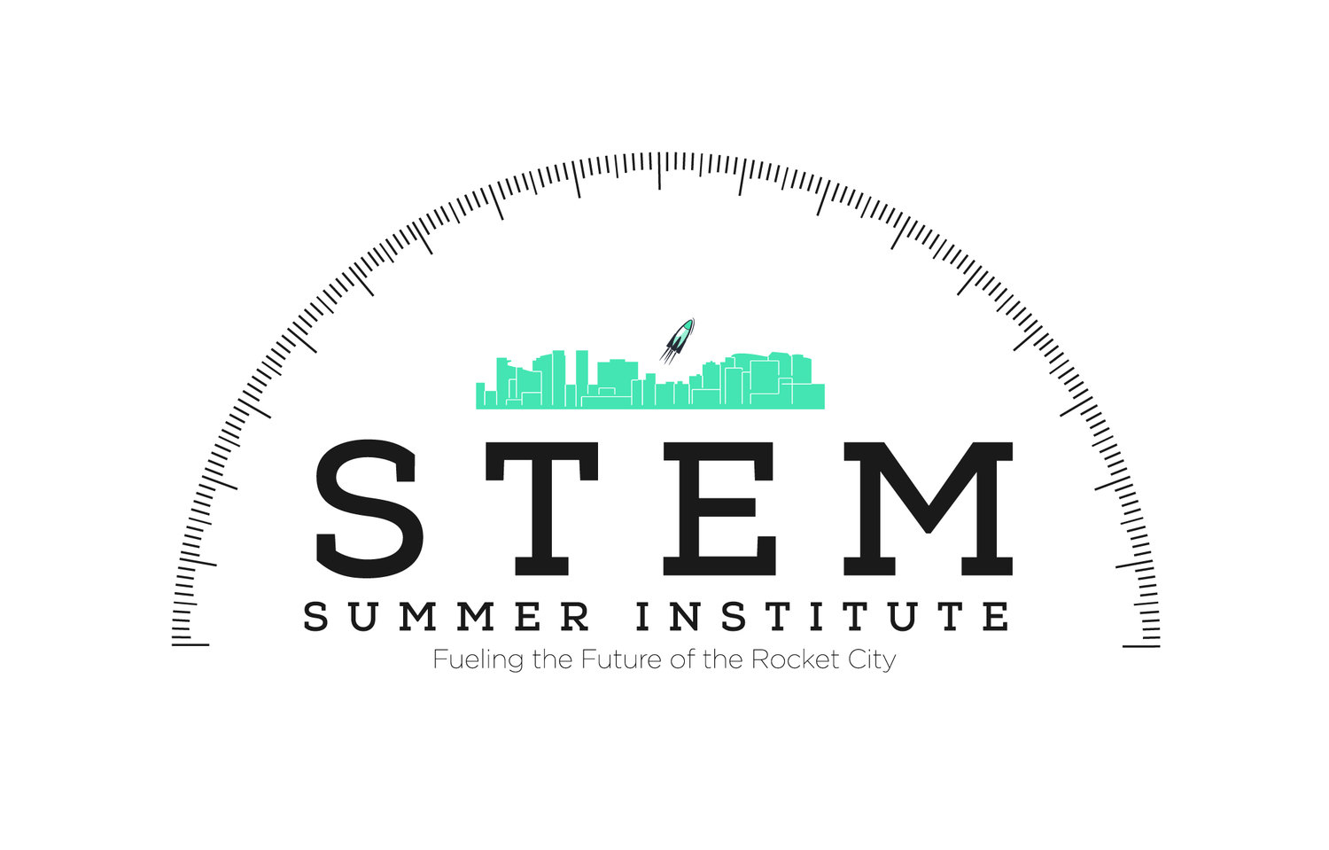STEM Summer Institute