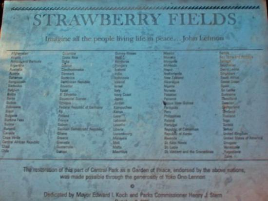 Strawberry Fields4.jpg