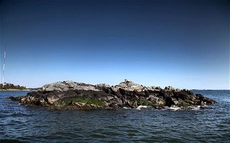 Rat_Island1.jpg