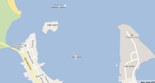 Rat_Island4.png