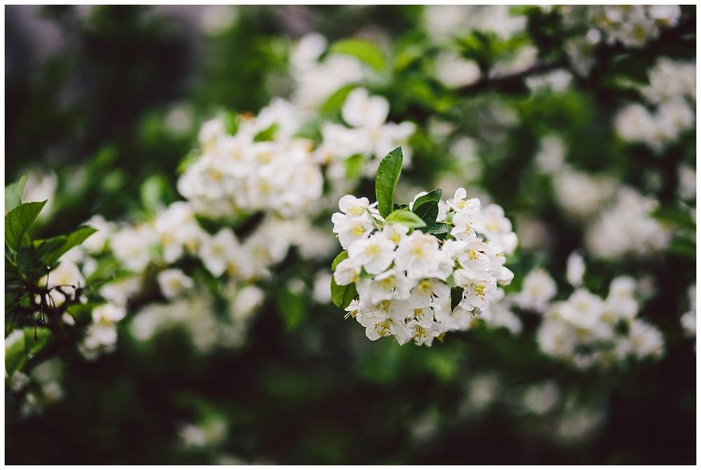 2015-05-18_0023.jpg