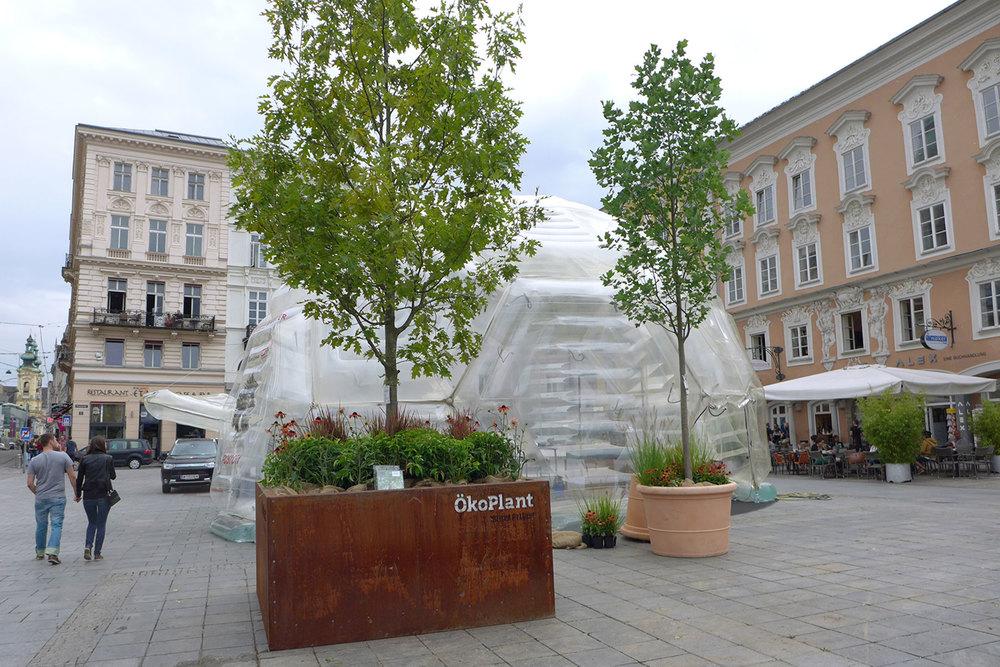 Hauptplatz_Alexandra_Wimmer_Ö1_1.jpg