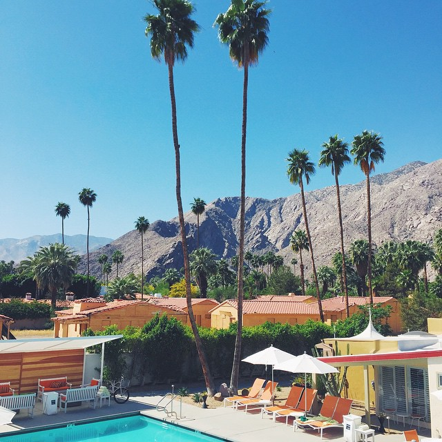 Spending the weekend in Palm Springs! Love this place! #sunshine  #milkstripes #blogger #lifestyleblog #styleblogger #fashionblog #fashionblogger #windycitybloggers #chicagoblogger #palmsprings #easter #weekend #weekendaway