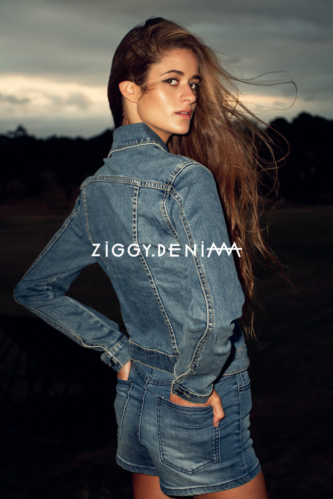 ZiggyDenim-1-2 copy.jpg
