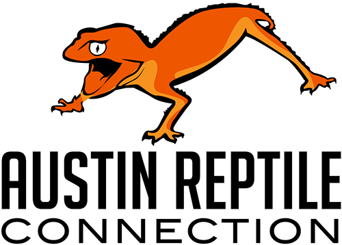 Austin Reptile Connection | Captive-bred Geckos, Skinks & Other Reptiles