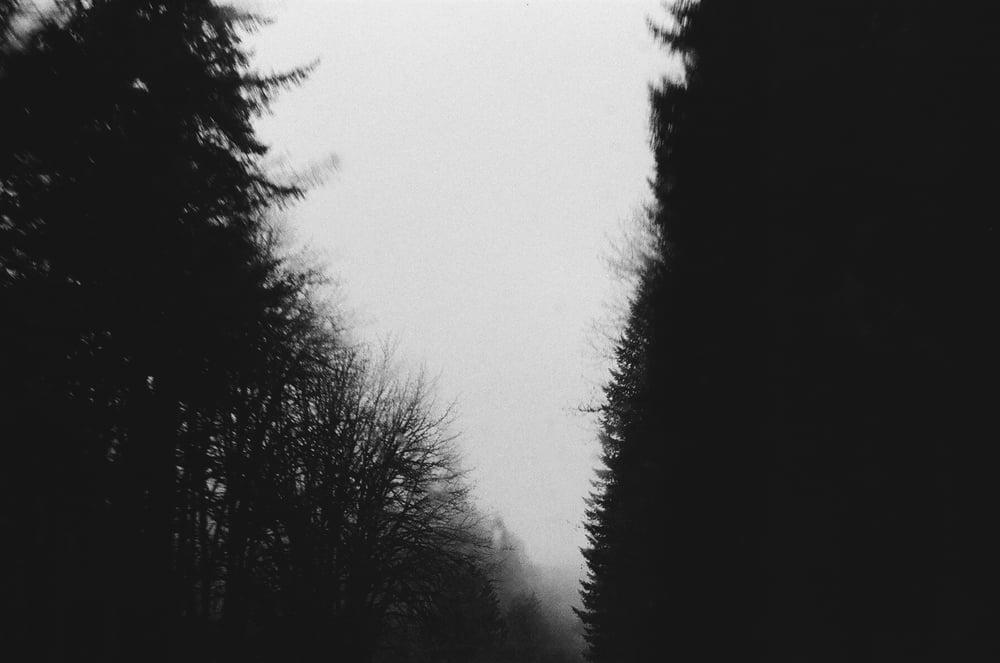 Portland-Black-and-White-Film-4-casenruiz.jpg