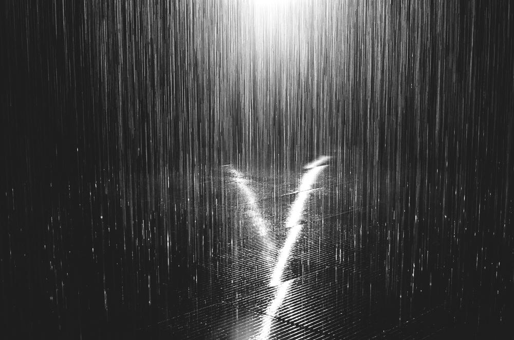 LACMA-Rain-Room-Film-3-bw-casenruiz.jpg