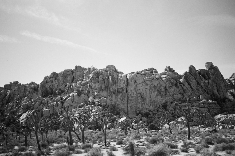 Joshua-Tree-Film-Mountains-1-bw-casenruiz.jpg