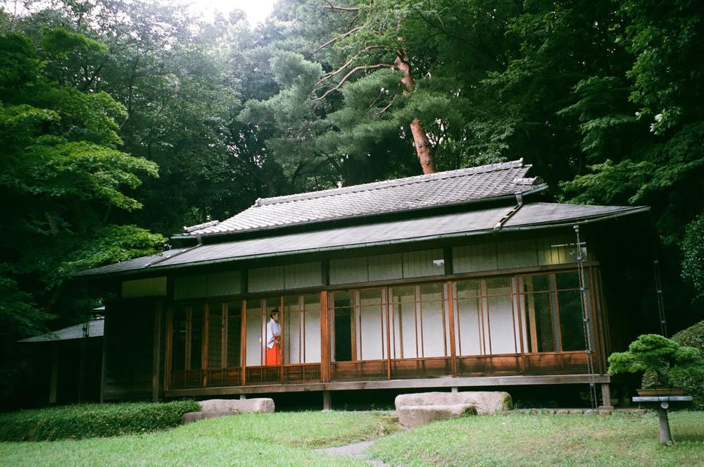 Tokyo-Meiji-Jingū-Gardens-Film-casenruiz.jpg