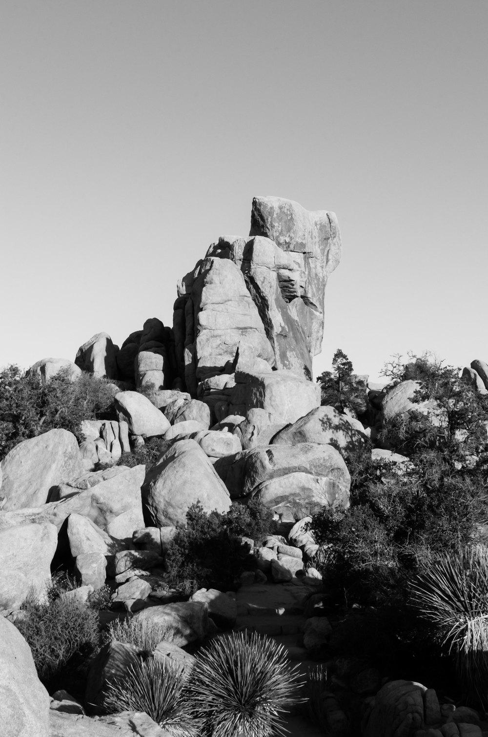 Joshua-Tree-Rocks-bw-casenruiz.jpg