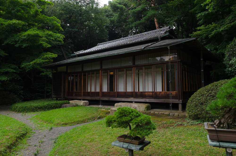 Tokyo-Garden-6-casenruiz.jpg