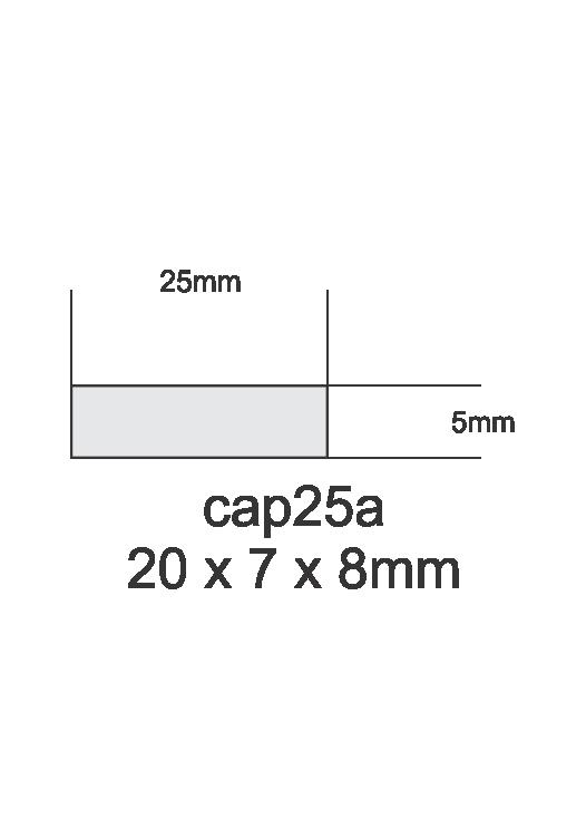 cap25a.png