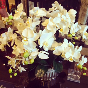 Stunning orchids at the event