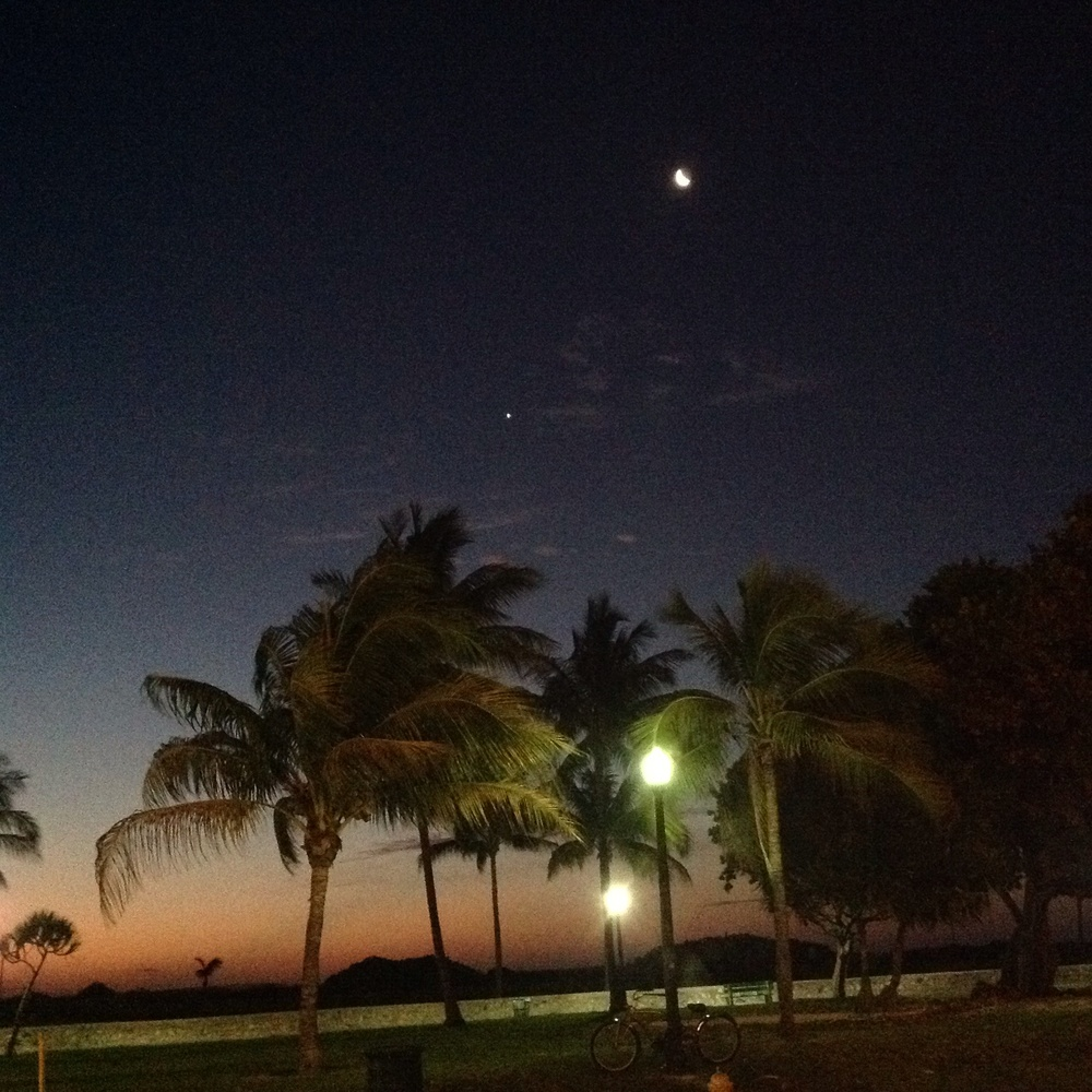 Moonlight in Miami