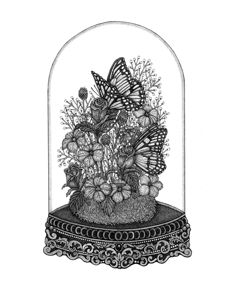 Butterfly-Dome-Print.jpg