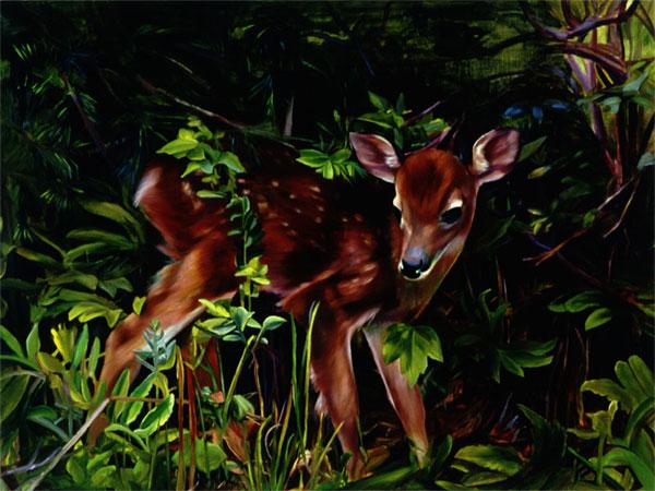 deer_600.jpg
