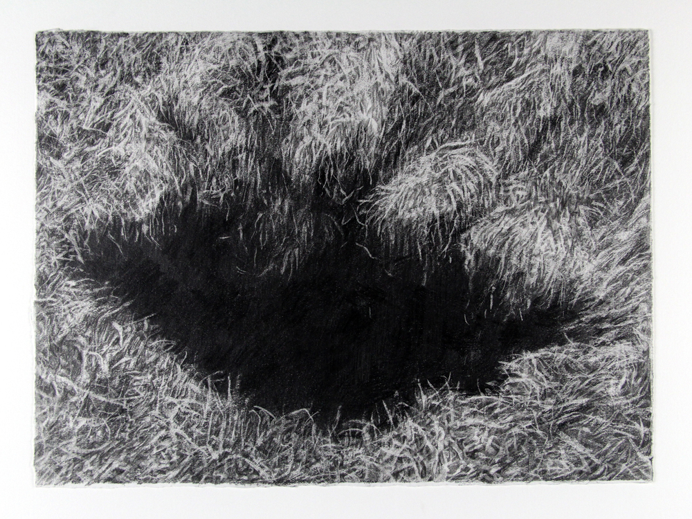 "splinter.     pencil on paper. 11 x 15"". 2011"