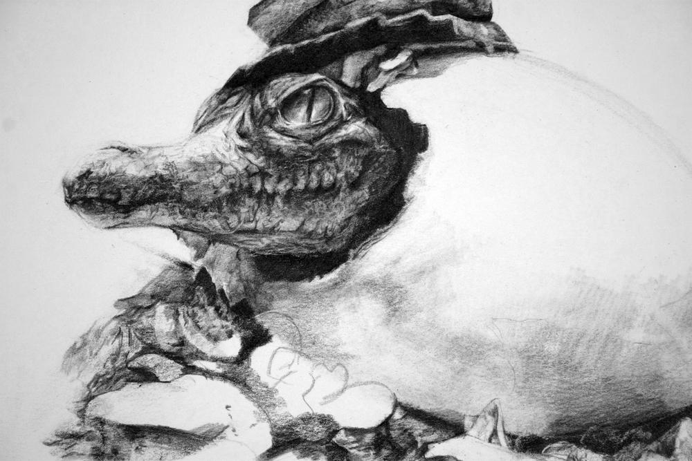 baby croc detail.jpg