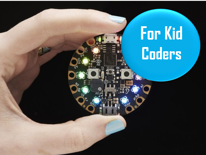 """AdaFruit Circuit Playground Express Ages 8+   This is a great coding-starter kit for kids ages 8+. AdaFruit provides a lot of helpful tutorials and challenges online to help guide you in your play. One promising review: """"This is an amazing starter project! Whether you're a seasoned programmer or you just want an easy project this will amaze you. Everyone I showed this to said they couldn't program because it was """"too hard"""", but after writing a program in seconds they all said they wanted one too!"""""""