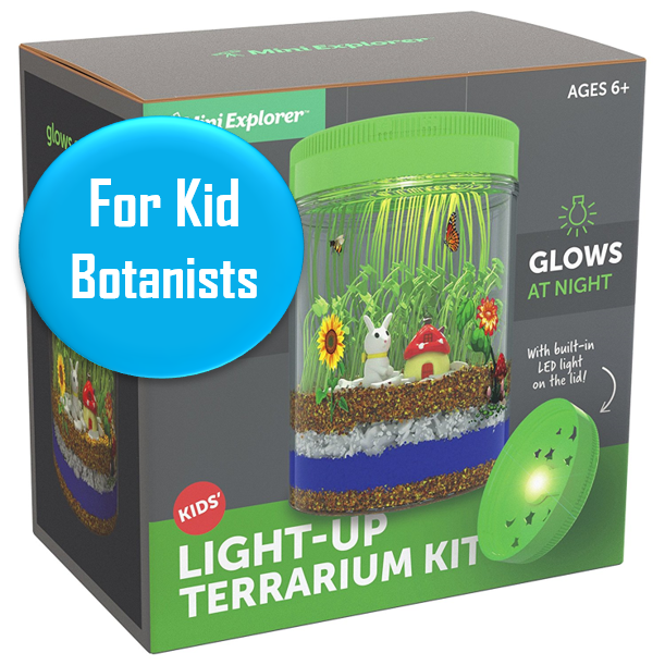 Terrarium Kit - All ages   This best-seller on Amazon is great for the kid who loves nature. Appropriate for all ages. It comes with Terrarium jar , light-up jar lid, Micro-USB charging cable, clear and easy step-by-step instruction booklet for all ages, soil, blue sand, river rocks, wheatgrass and chia seeds, small bunny and mushroom miniatures, removable stickers for decoration, spray bottle, and wooden stick to aid in planting the seeds.