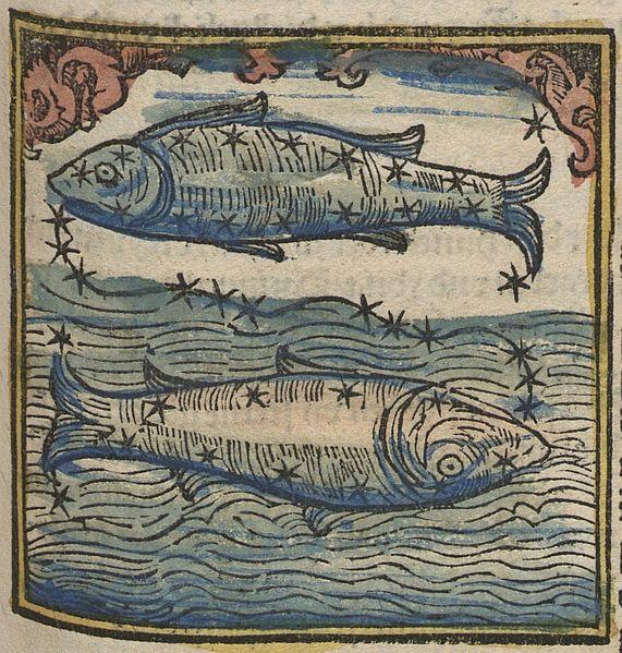 """""""   Pisces"""" -Johannes Regiomontanus"""