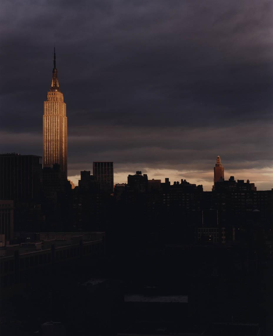"""""""NEW YORK"""" - Martyn Thompson."""