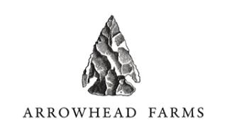 Arrowhead+.png