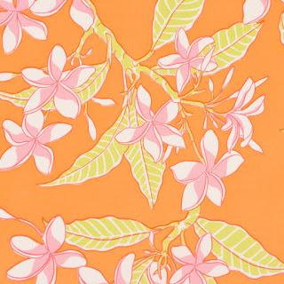 Antilles+Frangipani+Orange.jpg