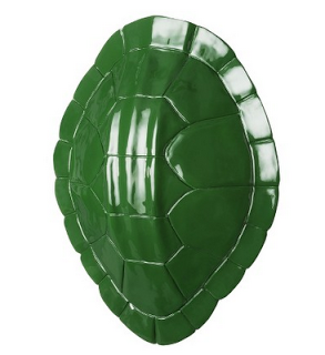 Green+Tortoise.png