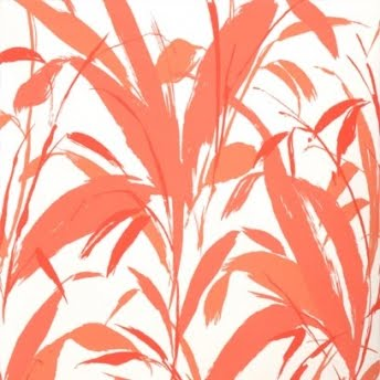 Meadow Reed- Coral on White
