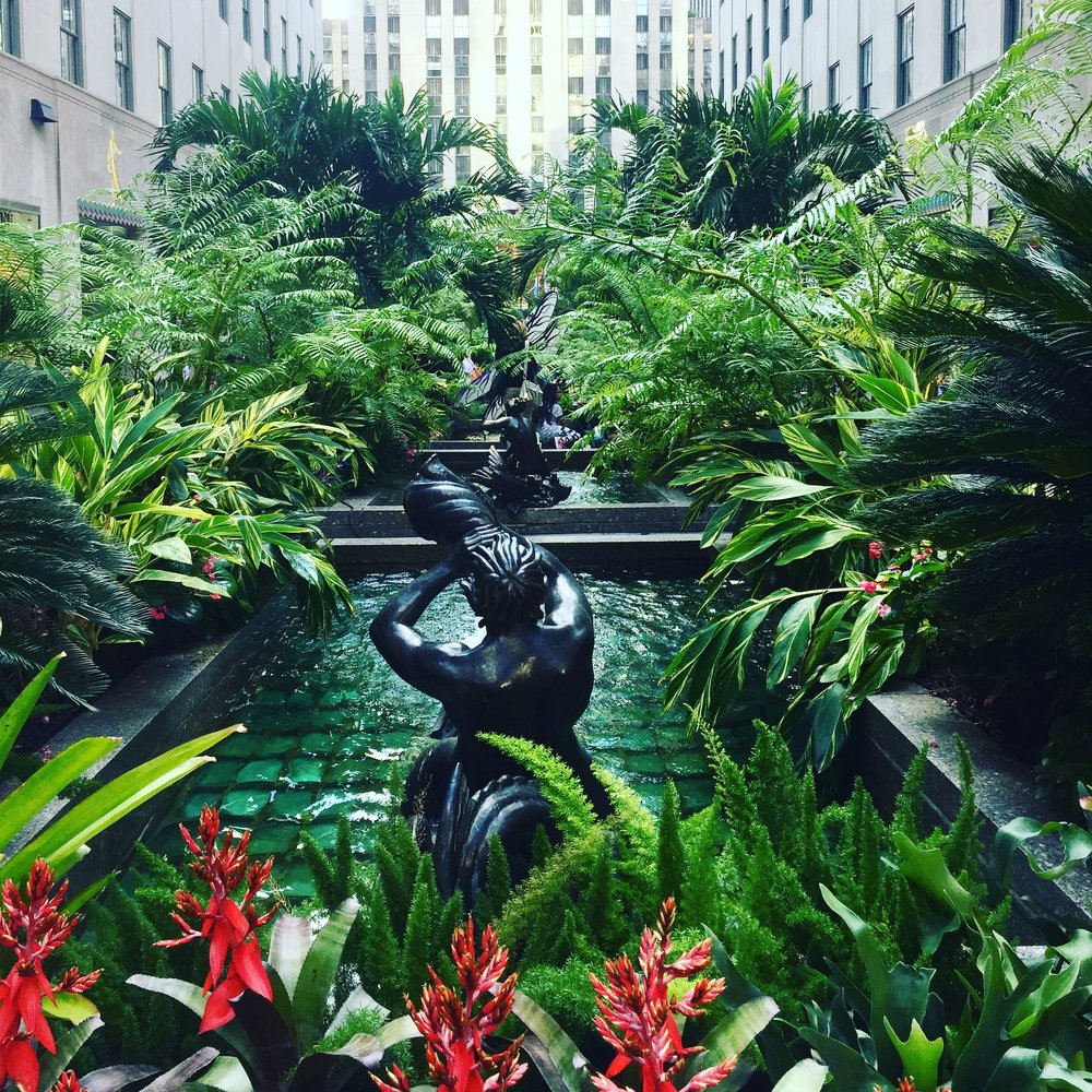 The tropical scene at Rockefeller Center this summer