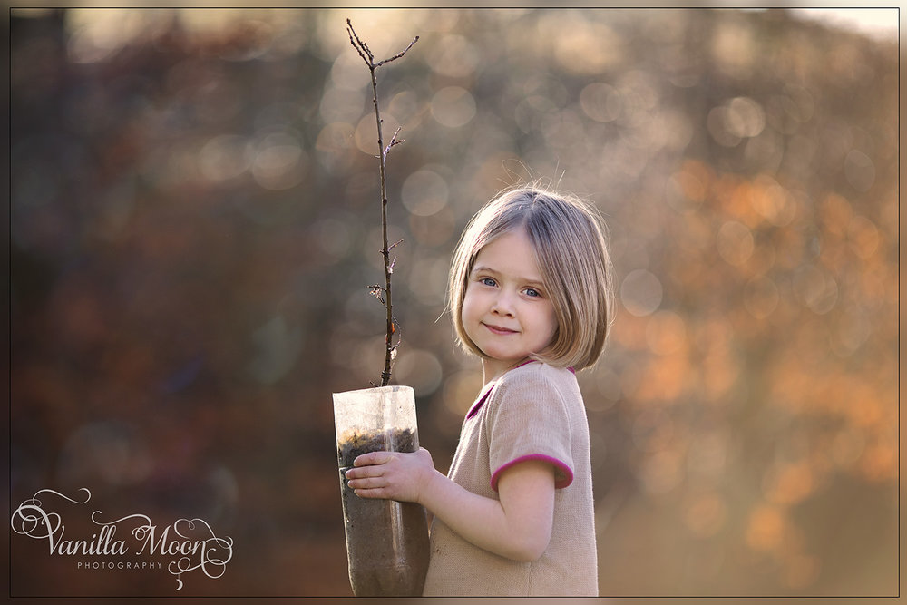 emilia oak - online.jpg