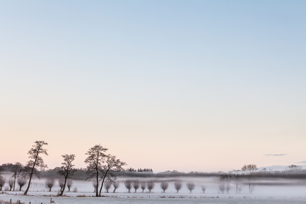 Winter landschap