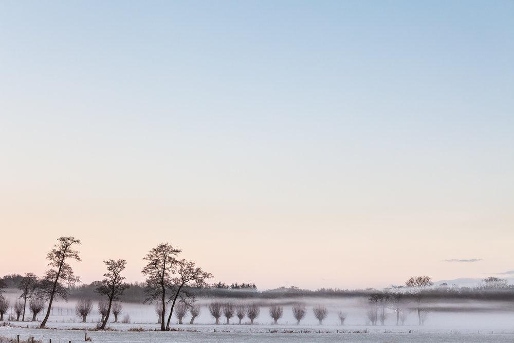 Mistig landschap in Overijssel