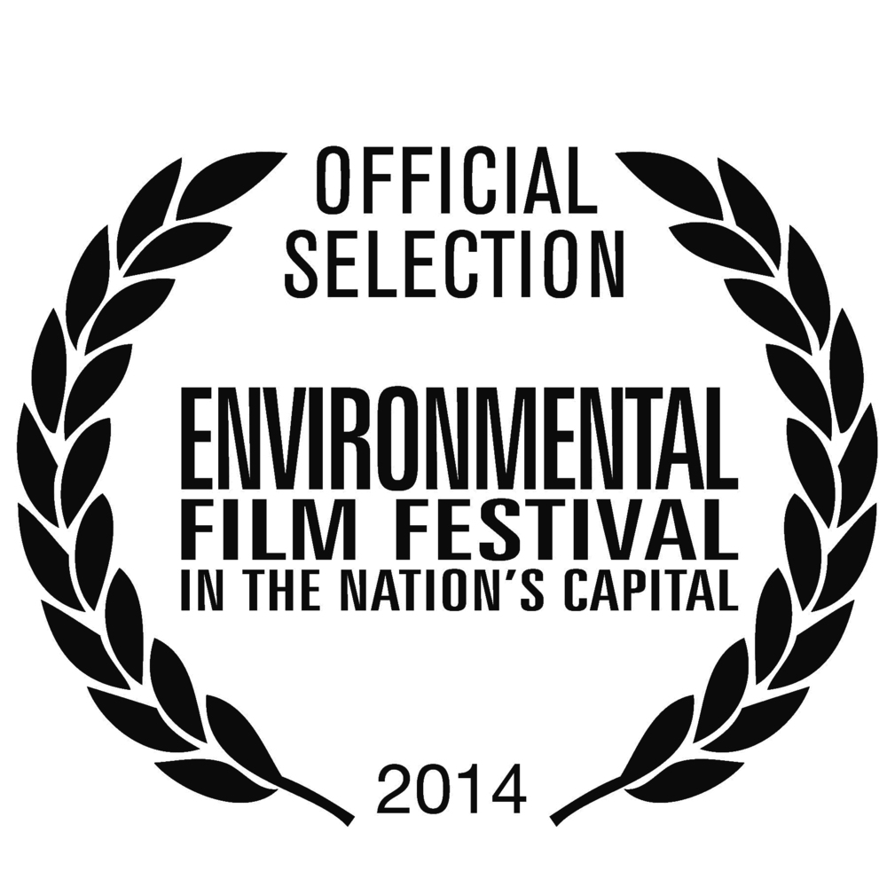 2014_EFF_official_selection_logo_RGB_1-1.jpg
