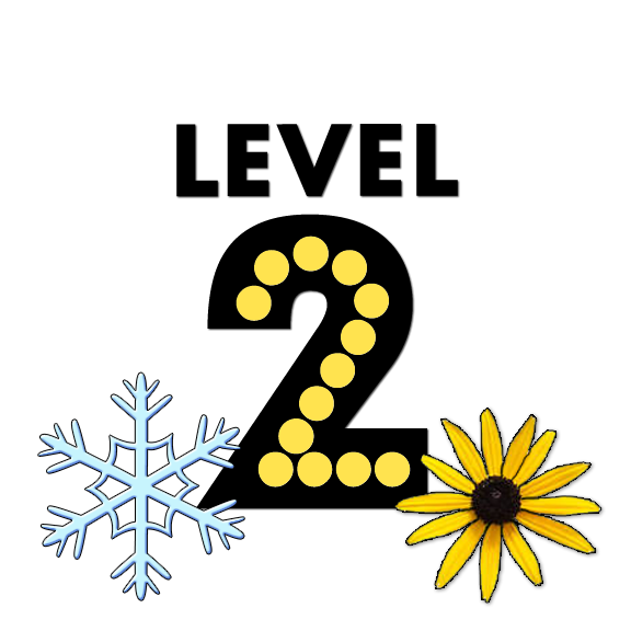Winter/Spring Level 2