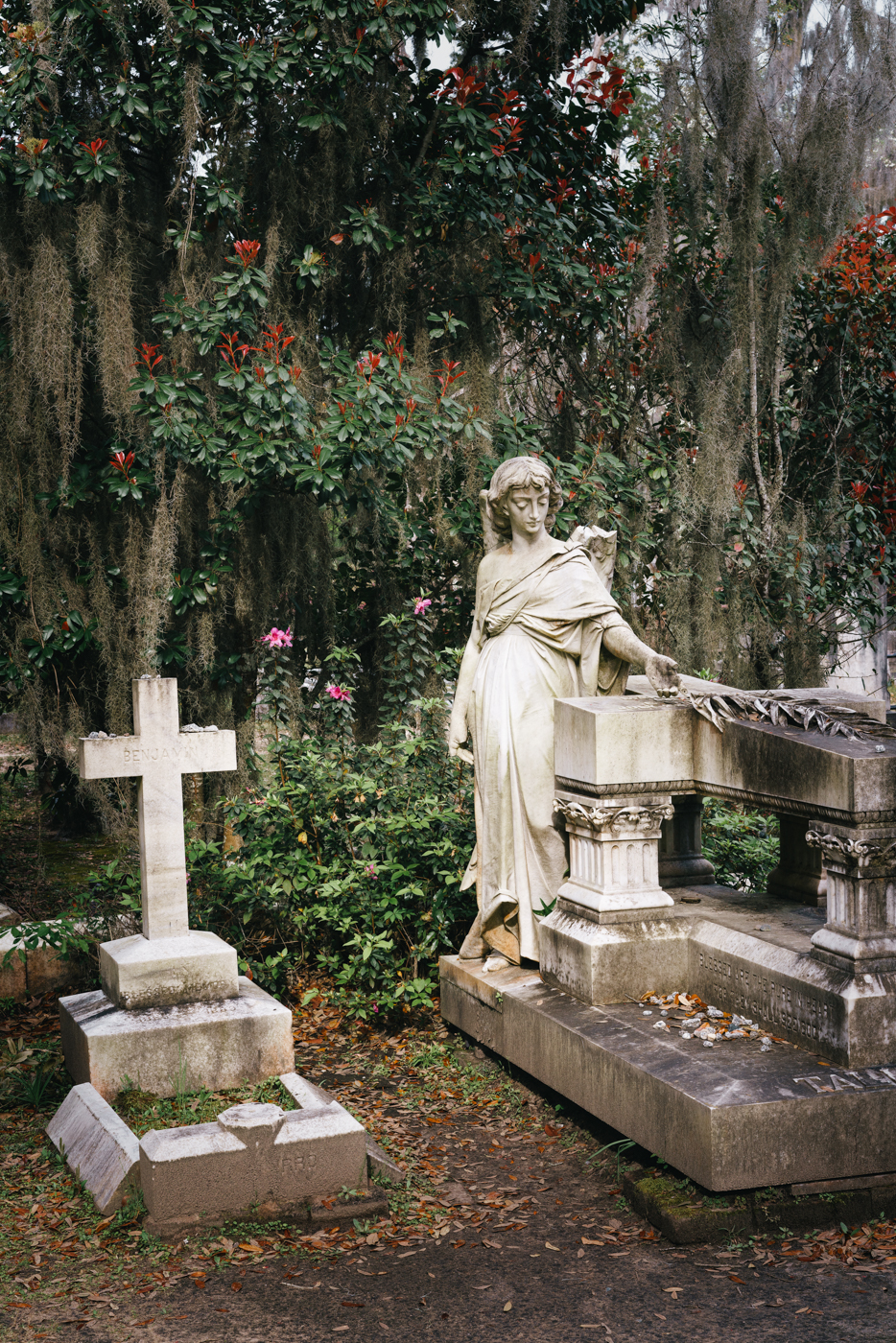 I usually hate cemeteries, but this one is beautiful. And full of interesting ghosts.