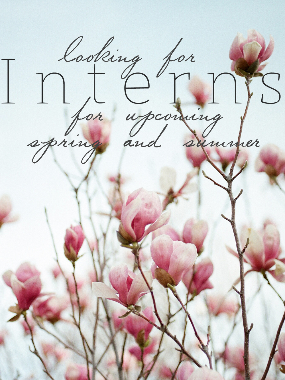 We're looking for interns for this coming spring and summer! We've had several inquires asking whether or not we are accepting positions and we are so excited to say yes! Because our business is so new we are only looking for internships and would love to talk to you individually about what you're interests are whether it's floral design or event styling and coordinating. This internship will be based around the events we have and leading up to them. We're looking for like minded people who are excited about what is to come for Oklahoma weddings and want hands on experience !   Please send your resume to Taylor@EverSomething.com or Katie@EverSomething.com and we will be contacting you to set up a meeting.