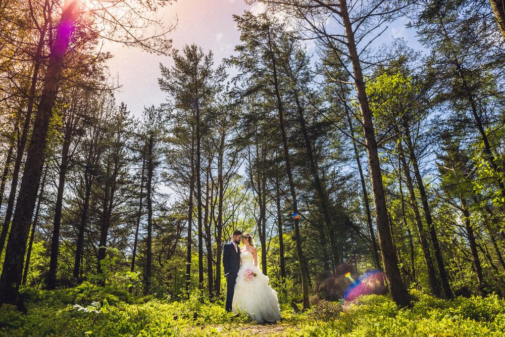 Eirik Halvorsen - Solvi og John bryllup-119.jpg