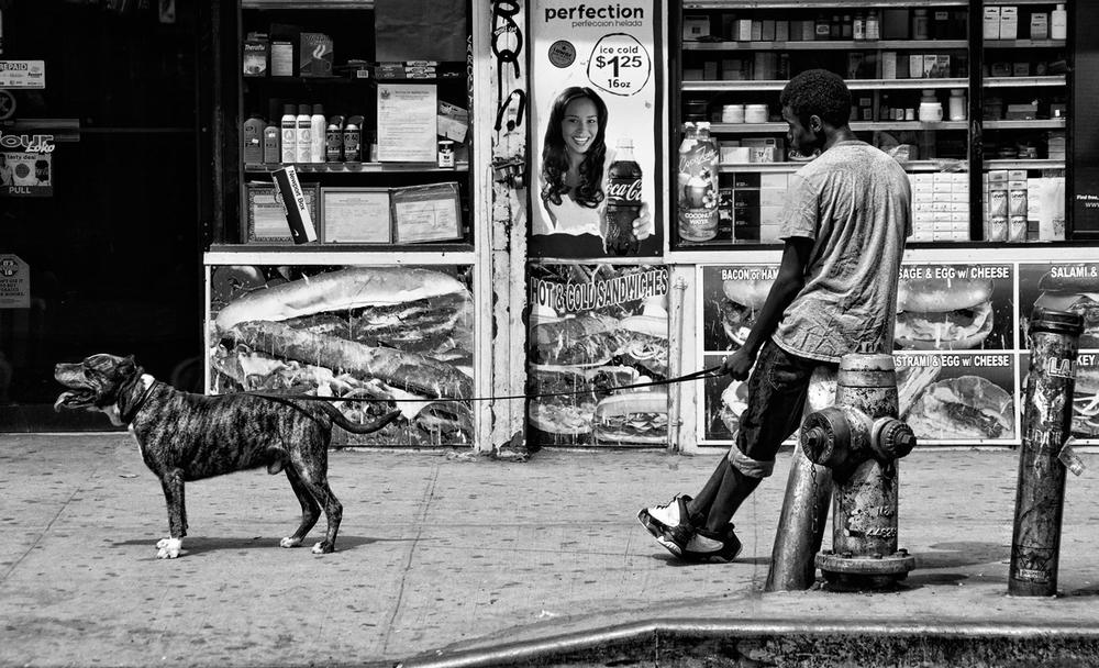 chico-con-perro.jpg