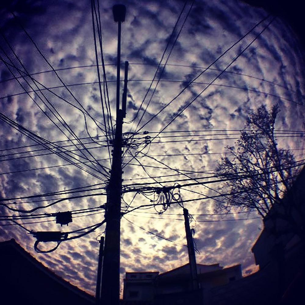 Carla_Trevizani_Autorais18.jpg