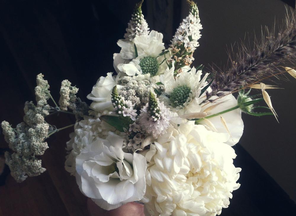 flowers-03.jpg