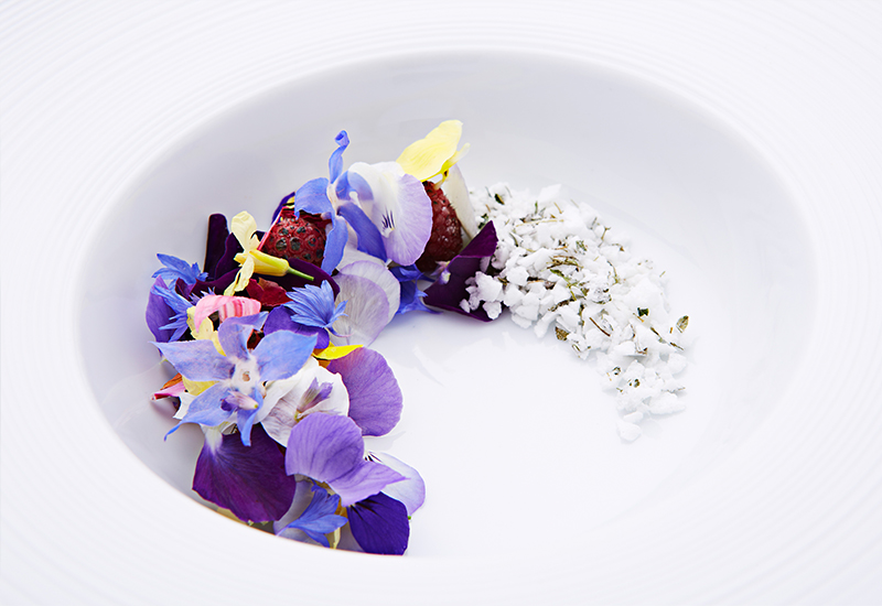 Geranium Copenhagen - Gastronomy in Full Bloom